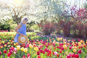 idiomi-primavera-regno-unito